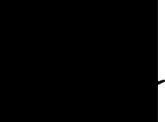 馬瓜 エブリン